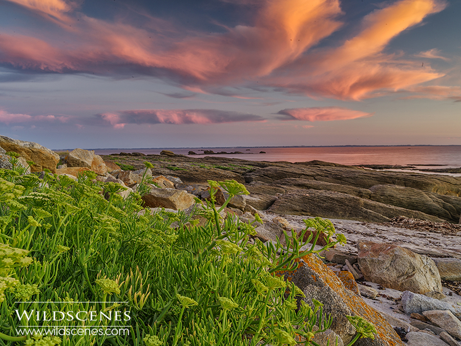 landscape photography in Brittany